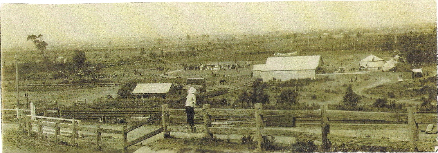 Bunyip Showgrounds early 1900's