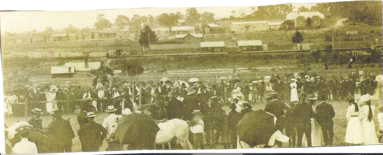 Bunyip township (early 1900's)